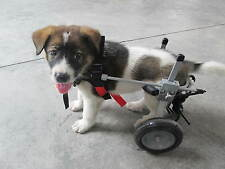 REFURBISHED BEST FRIEND MOBILITY DOG WHEELCHAIR XS EXTRA SMALL DOGGIE DOG