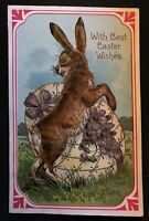 ~Beautiful Big Bunny~Rabbit with Fancy Egg~Antique PFB Easter Postcard-p784
