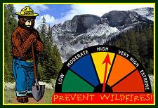 REAL MOVING GAUGE SMOKEY BEAR FIRE DANGER WARNING SIGN! U.S. FOREST SERVICE PARK
