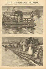 Louisiana, Mississippi Floods, Negros Camping On The Levee 1890 Antique Article