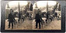 Keystone Stereoview Gold Miners, Camp & Dogs in ALASKA from the 1930's T400 Set