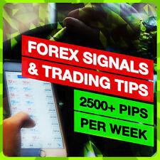 3,000+ Pips Per Week | FREE Forex Trading Signals Alerts on Telegram | FX & Gold