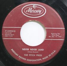 Hear! Rock Doo Wop 45 The Pitch Pikes - Never Ever Land / Zing Zing On Mercury