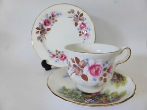 Vintage Mixed Floral English Tea Cup, Saucer + Plate, Queen Anne & Royal Vale