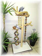 Freisitz, Papageienspielzeug, ORIGINAL Java Holz, Graupapageien/Amazonen. 165 cm