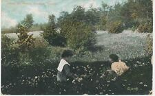 "Canada 1920 used coloured pc ""Among the Daisies, Rosedale, Toronto"""