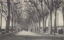 LUCCA - Cortina delle Mura 1927