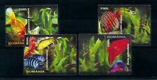 [101036] Romania 2005 Marine Life fish with Labels  MNH