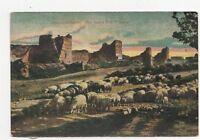Constantinople Les Mars des 7 Tours Turkey Vintage Postcard 136a