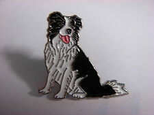 Border Collie sitting down pin badge. Nice lapel badge, Rough, Smooth Welsh