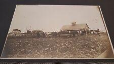 "Vintage 5"" X 8"" COWS Black & White Scrapbooking Photograph Picture Photo"