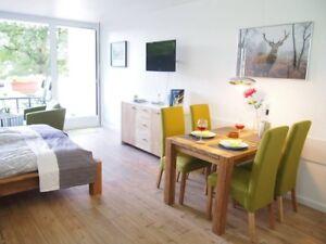 Ferienwohnung Apartment Harzgrün Sankt Andreasberg/Harz -neu eingerichtet