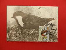 timbre 1° jour  wildfowl trust - dipper - 16/01/1980
