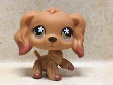 Littlest Pet Shop LPS #716 Cocker Spaniel Dog Preowned