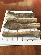 "(1) LARGE 7""+ SPLIT Elk Deer **NATURAL SHED** Antler Premium Dog Chew"