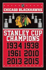 CHICAGO BLACKHAWKS - STANLEY CUP CHAMPIONS POSTER - 22x34 NHL HOCKEY 14366