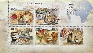 COMORO ISLANDS WILDCAT STAMPS SHEET 2011 MNH WILD ANIMALS LION LEOPARD WILDLIFE