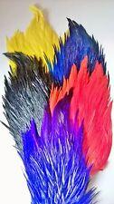 Pluma Gallo Anzuelo Cubierta, Grado Aa, Escoger entre 9 Colours, Vuelo Atado ,