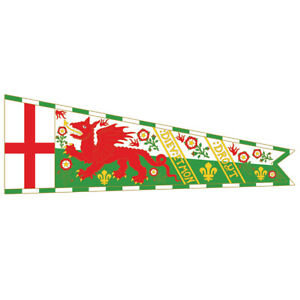 Henry the VIII Royal Standard banner flag