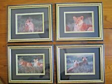 Vintage Africa Safari Pictures Photo Collection Lions Wall Art Photographs Decor