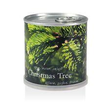 Weihnachtsbaum in der Dose - Christmas Tree von MacFlowers