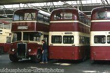 Rossendale Transport PD3 31/37/45 Bus Photo