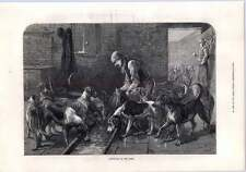 1872 Hunting Hounds Dinnertime On The Flagstones