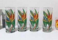 Vintage Set of 4 Retro Bird of Paradise Drinking Glasses Tumblers