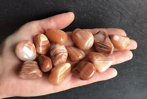 x2 Sardonyx Polished Crystals 15-25mm Protective Willpower Happy Healing Order