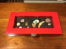 Rock, gem, shell, & artifact display case for any age!!! Custom colored Red!!!