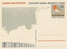 Poland Prepaid Postcard (Cp 455) - birds
