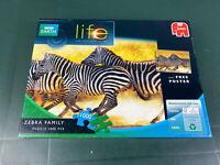 BBC Earth Zebra Family 1000 Pieces Puzzle By Jumbo Animal Safari