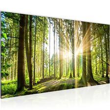 Wandbild XXL Modern Wohnzimmer - Wald Landschaft Grau Braun  Schlafzimmer Bilder