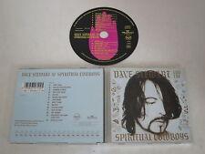 DAVE STEWART/AND THE ESPIRITUAL COWBOYS (PD74710) CD ÁLBUM