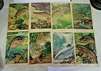 Vintage THE GARCIA COLLECTION ART with MITCHELL REELS Full Page Ads on Back 8pcs