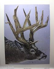 "RANDY FEHR ""North American Whitetail"" Mint LTD art print Certificate DEER SNOW"