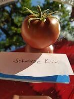 Tomatensamen BLACK KRIM Schwarze Krim. Fleischtomaten russische Sorte