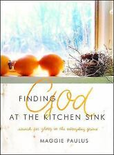 NEW - Finding God at the Kitchen Sink: Search for Glory in the Everyday Grime