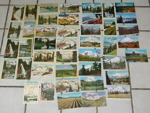 43 Rainier National Park 23 are Linens & 20 Chromes Washington Postcards