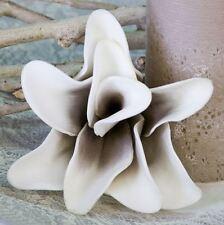 """28523 Deko Blume Foam Flower """"Rumba"""" Schaumstoff Blüte mit Durchmesser 15cm"""