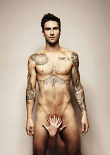 ADAM LEVINE THE VOICE HOT SEXY NAKED SINGER PICTURE 8x10 GORGEOUS PHOTO