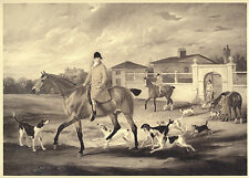 FOXHOUND FOX HUNTING HORSE Thomas Goosley and the Belvoir Hounds Leaving Kennels