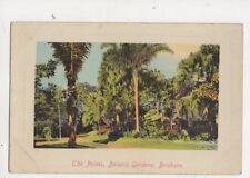The Palms Botanic Gardens Brisbane Australia Vintage Postcard 353b