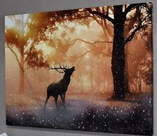 ANIMALS DEER STAG B&W CANVAS PICTURE PRINT WALL ART CHUNKY FRAME LARGE 1562-2