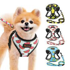 Reflective Dog Cat Step-In Harness and Lead Soft Mesh Vest for Small Medium Dogs