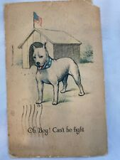 Bull Terrier Post Card War time c.1900