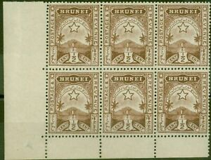 Brunei 1895 1/2c Brown SG1 Fine MNH Corner Block of 6