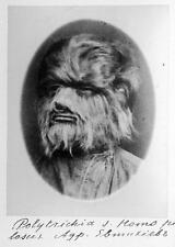 Old Photo.  Scary Freak Circus - Super Hairy Man