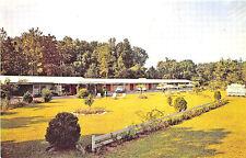 Ocala FL Silver Sands Motel Old Cars Postcard