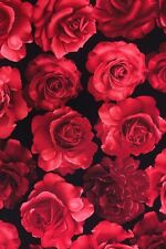Fat Quarter Large Red Roses 100% Cotton Quilting Fabric Timeless Treasures
